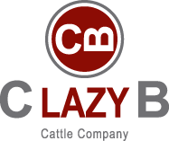 C Lazy B Cattle Company
